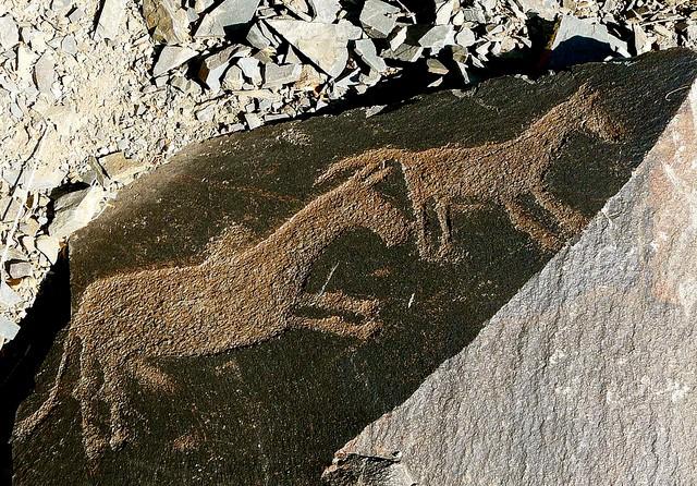 petroglify-tamgaly-09.jpg.7782a5fcc594d7